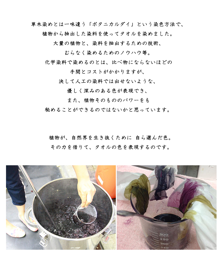 自然の植物から抽出された染料